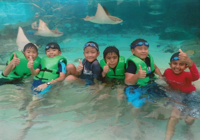Waterpark Birthday Party @ Adventure Cove